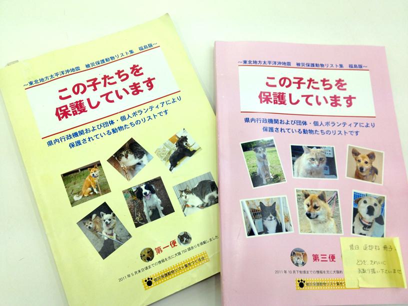 「震災で消えた小さな命展」明日から東京会場です_e0239908_21401369.jpg