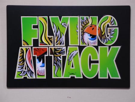 FLYING ATTACK 全23作品_a0095515_1381619.jpg
