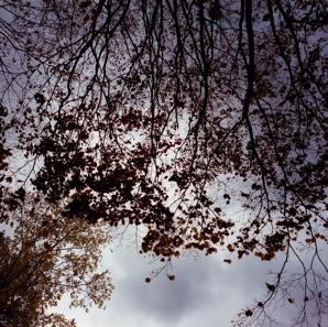 f0182924_20123453.jpg