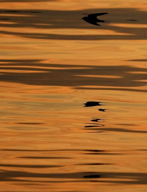 壁島の夕陽_d0074828_21211268.jpg