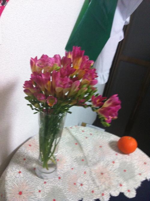 素晴らしい藤の花ねぇ_c0185356_2013517.jpg