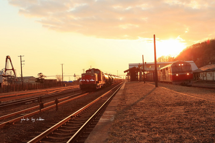 水芭蕉と普通列車あんど小焼けのDD51タンクより~_a0039860_1936247.jpg