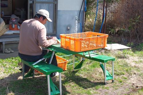 種ジャガイモを蒔く_c0110869_1445352.jpg