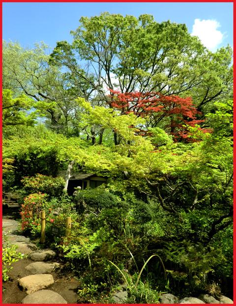 尾形光琳の「燕子花」、見たよ!春のシ・ア・ワ・セ。_e0236072_0515871.jpg