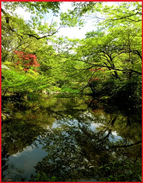 尾形光琳の「燕子花」、見たよ!春のシ・ア・ワ・セ。_e0236072_0541762.jpg