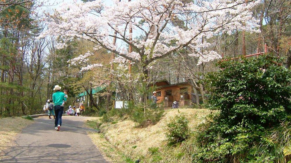 直江津五智公園キャンプ場!_e0065084_15564695.jpg