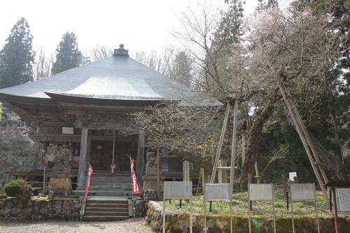 会津の五桜を取材してきました~♪part.2_d0250986_18132087.jpg