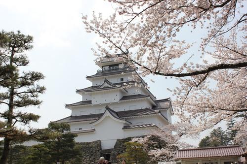 会津の五桜を取材してきました~♪part.2_d0250986_18211733.jpg