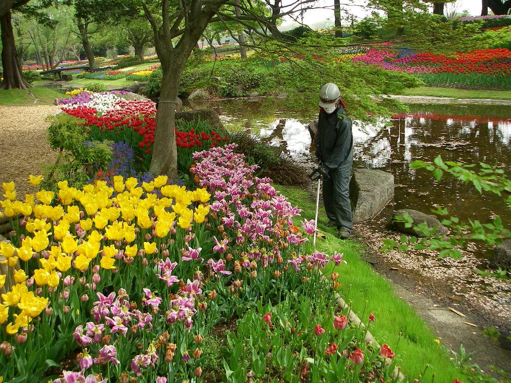 記念公園通信_b0172896_1853781.jpg