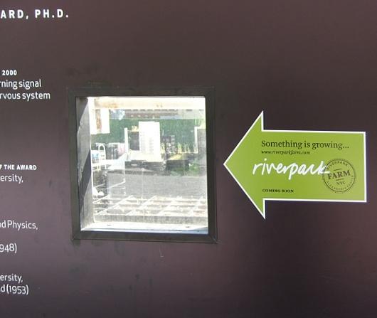 レストランと生命科学研究センターが運営するニューヨークの都市農園、リバーパーク・ファーム_b0007805_2454495.jpg