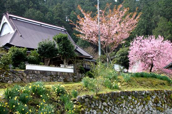 黒田の常燈寺_e0048413_1644333.jpg