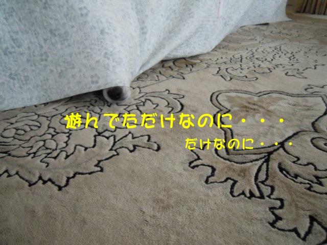 c0166622_20483496.jpg