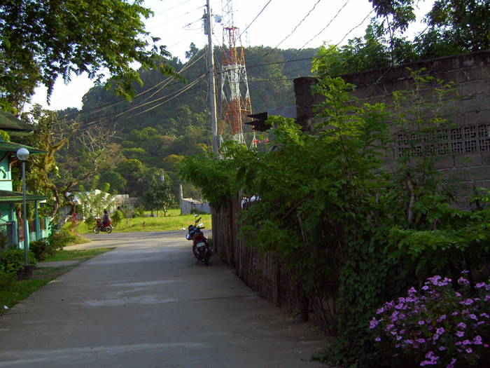 From a back street_e0202828_1911576.jpg