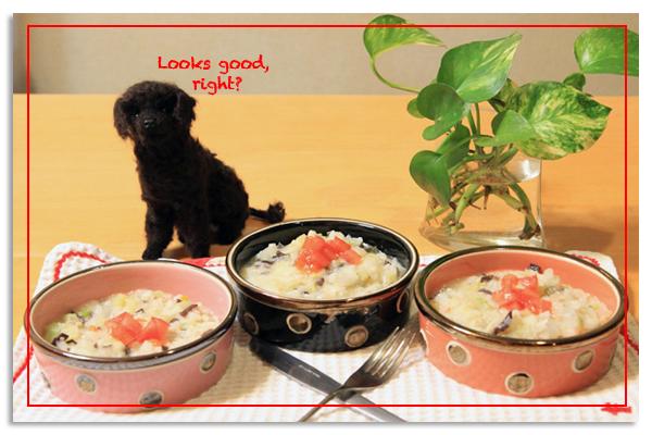 手作り食とドッグフード_e0166336_1221988.jpg