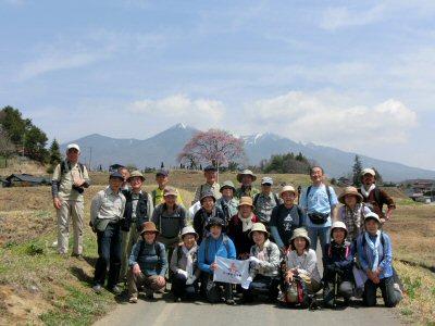 富士見の桜ウォーク_f0019247_011697.jpg