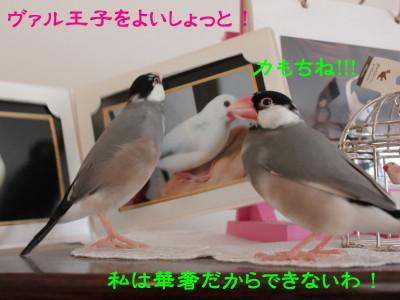 b0158061_20145521.jpg