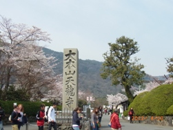京都~お寺巡りととうふカフェ_e0195766_4482362.jpg