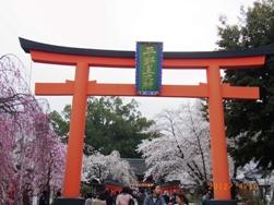 京都~お寺巡りととうふカフェ_e0195766_4535816.jpg