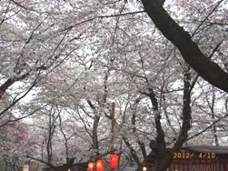 京都~お寺巡りととうふカフェ_e0195766_4542798.jpg