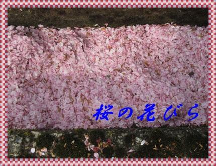 b0149071_15411143.jpg