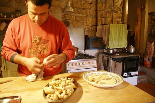 キノコの食べ方~菌の話_f0106597_04464.jpg