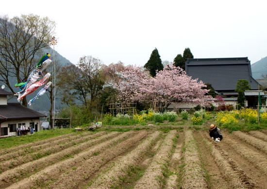 まいまい京都 大原あるき_e0048413_2233264.jpg