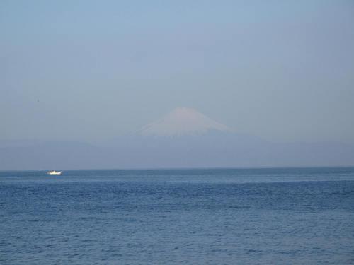 秋谷海岸 散歩_d0150720_6382158.jpg
