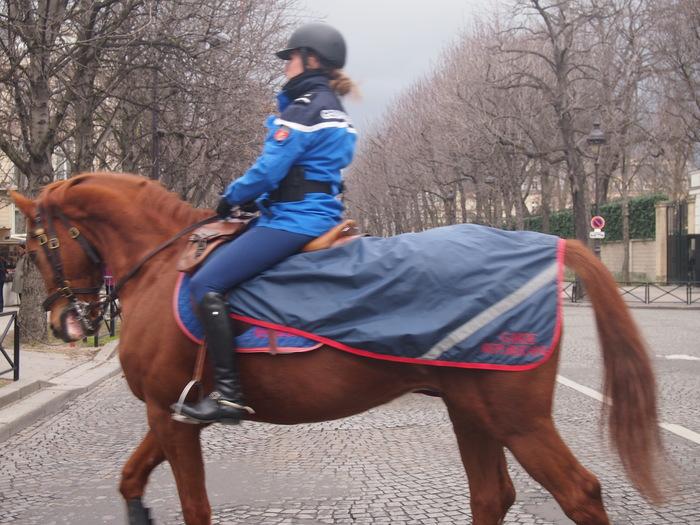 2012 2月 パリ  Petit Palais へ_f0062122_7451446.jpg