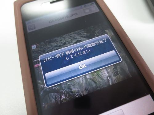 a0002177_1693519.jpg