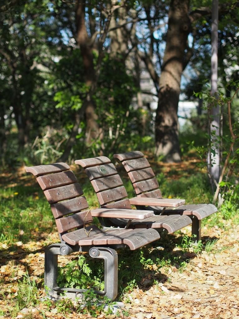 「天気の良い日は鶴見緑地」_a0133692_2182858.jpg