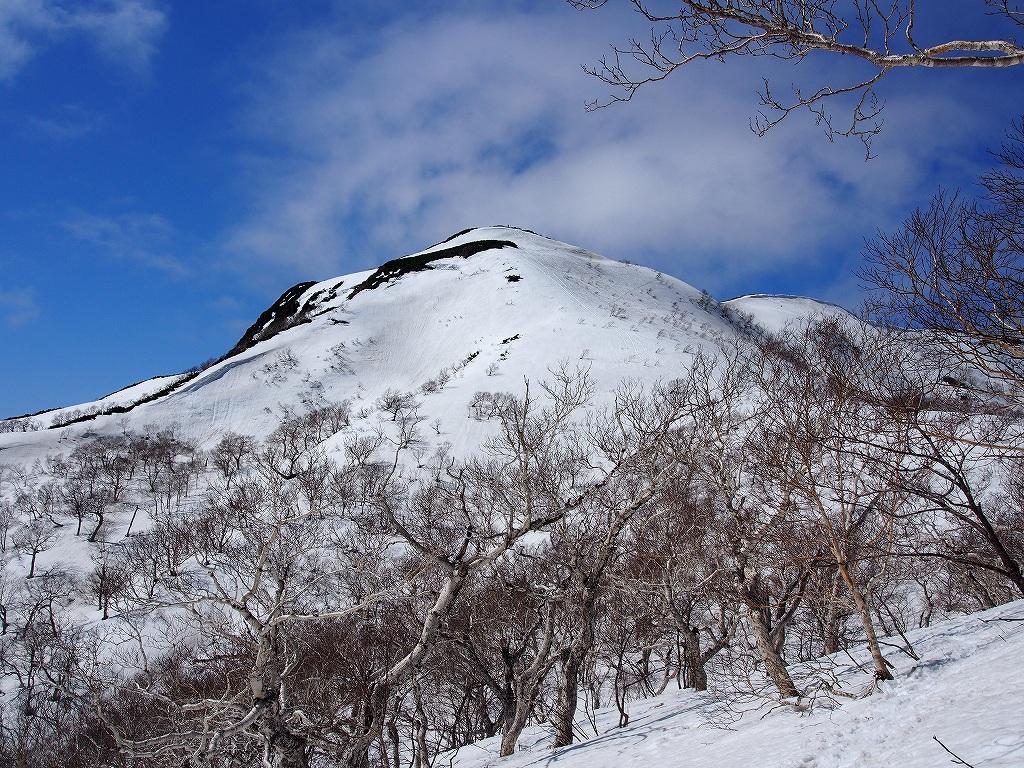 4月25日、様茶平(さまちゃんべ?)経由漁岳-その3-_f0138096_12413928.jpg