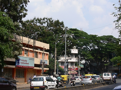 インド出張2012年04月-第二日目-インドで地ビール_c0153302_11294233.jpg