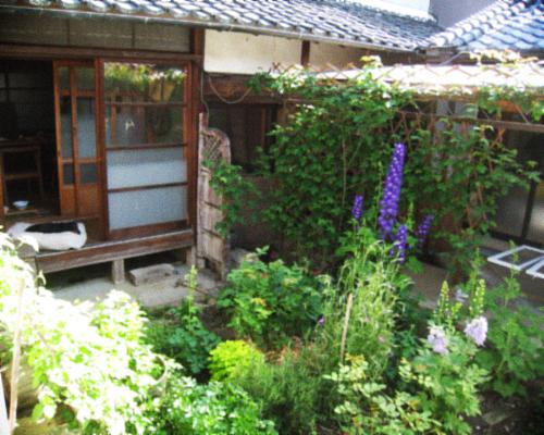 オーガニックな春の庭を囲む古民家暮らし。_d0077603_905145.jpg