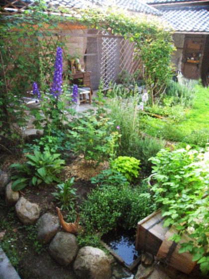 オーガニックな春の庭を囲む古民家暮らし。_d0077603_955910.jpg