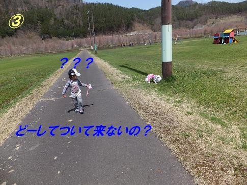 f0179203_1632924.jpg