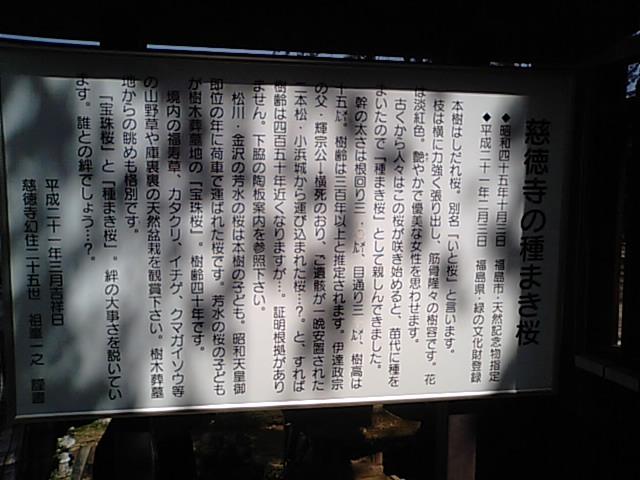 b0133713_2012181.jpg