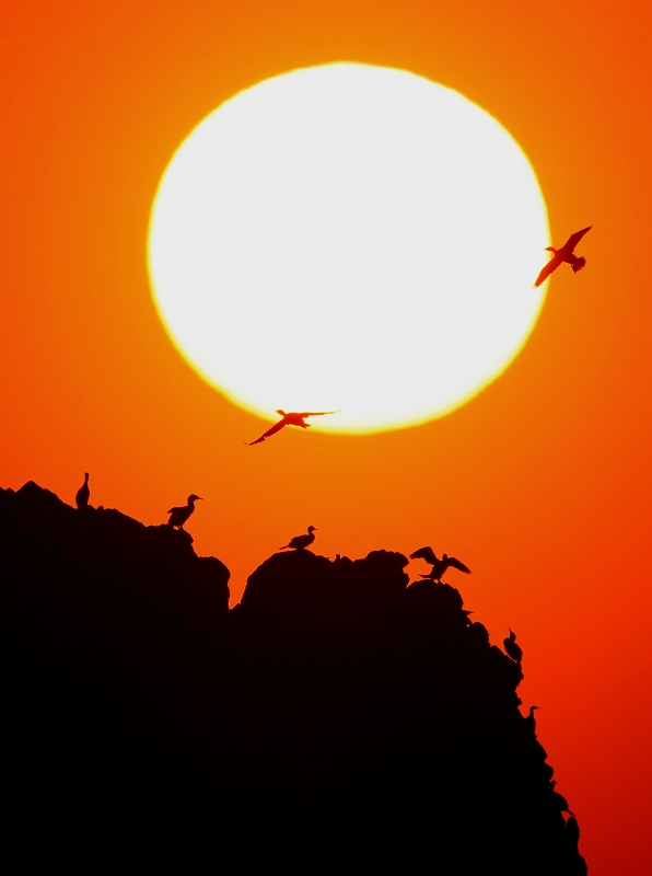 壁島の夕陽_d0074828_21471067.jpg
