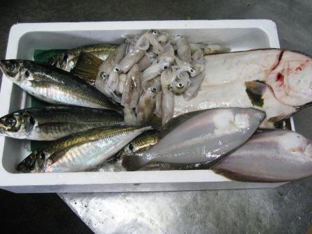 魚・山菜_c0206545_10533842.jpg