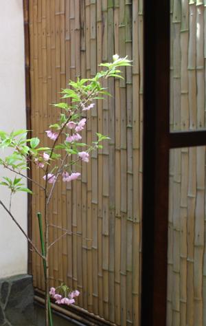 『蔵織の花が咲いたよ』・カメラマンの相田諒二さんがやってきた_d0178448_10584748.jpg