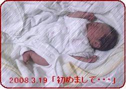 a0052666_16462881.jpg