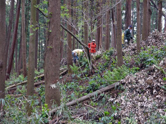 12年度最初の六国見山森林公園の定例手入れ終了:4・21_c0014967_12462639.jpg
