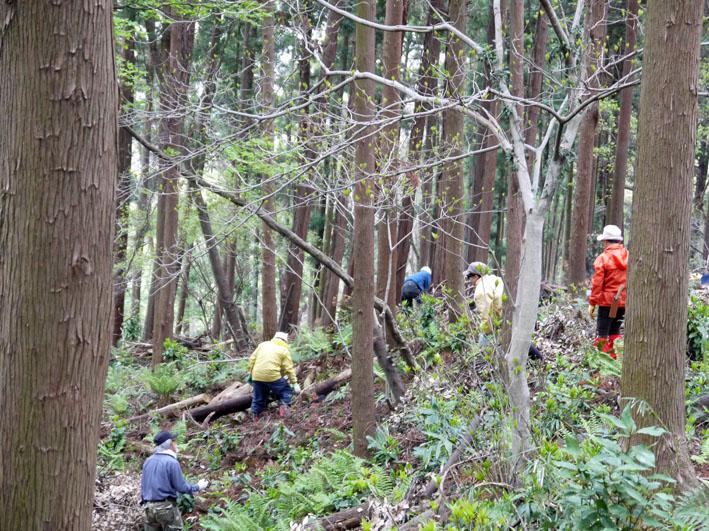 12年度最初の六国見山森林公園の定例手入れ終了:4・21_c0014967_12464274.jpg