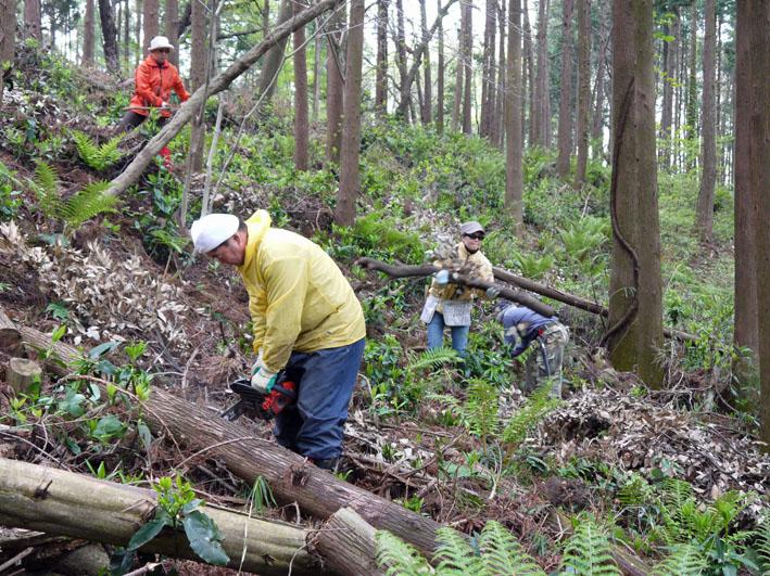 12年度最初の六国見山森林公園の定例手入れ終了:4・21_c0014967_1247793.jpg