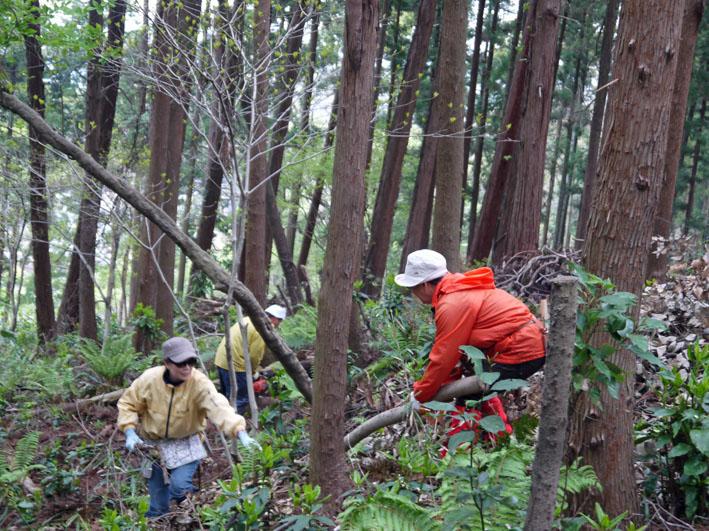 12年度最初の六国見山森林公園の定例手入れ終了:4・21_c0014967_12542997.jpg