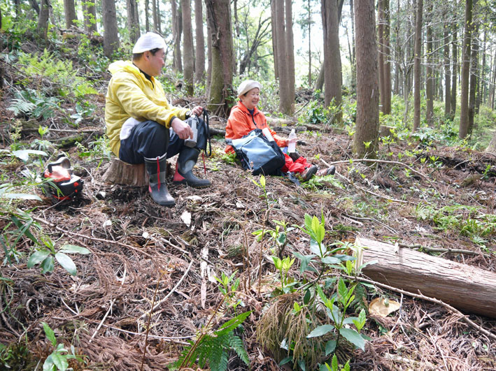 12年度最初の六国見山森林公園の定例手入れ終了:4・21_c0014967_12545437.jpg
