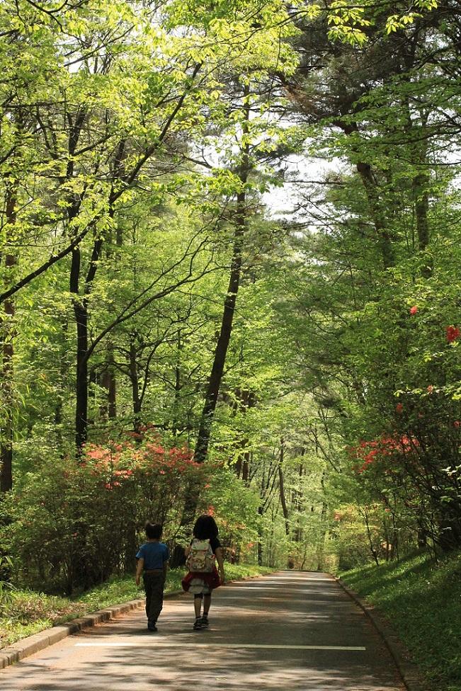 森林公園行き_a0107574_22585382.jpg