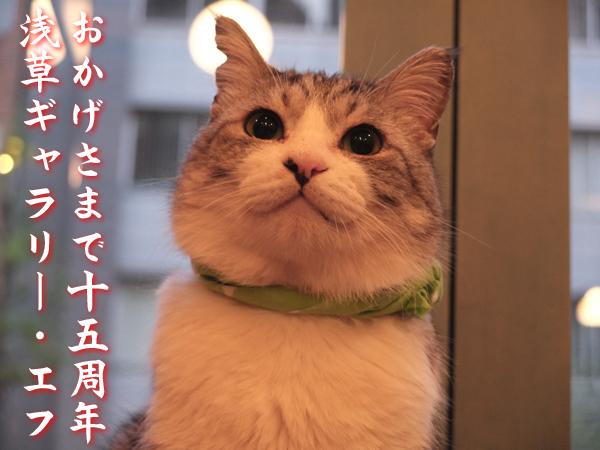 十五の春_a0180681_20193332.jpg