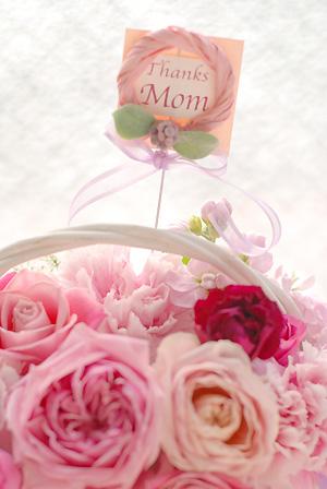 母の日フラワーギフト2012 生花アレンジ*ストロベリーガーデン Mサイズ_a0115684_6293885.jpg