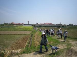 タマネギ収穫とDayキャンプ_d0120421_18181774.jpg