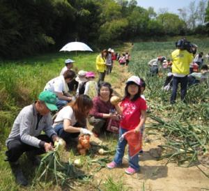タマネギ収穫とDayキャンプ_d0120421_18182853.jpg